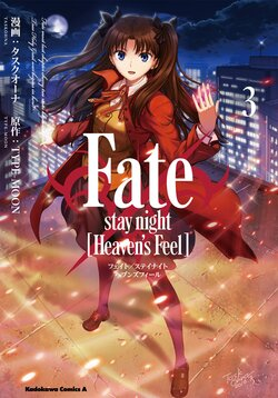 Fate/stay night[Heaven's Feel](3)